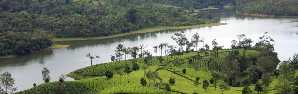 hills and backwater